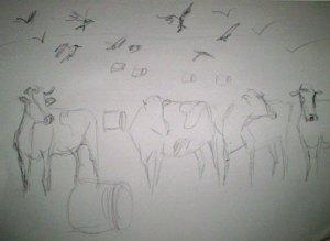 Cows & Crows (Sketch)