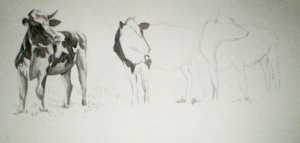 Cows Drawing (WIP1)