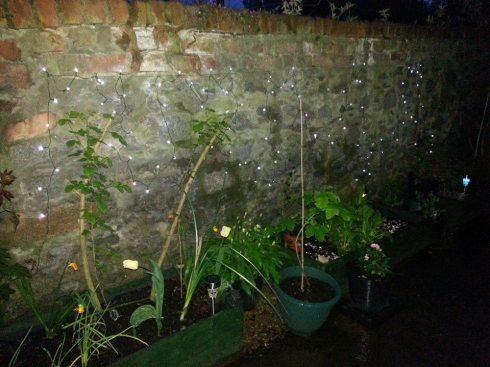 Solar Fairy Lights in Garden