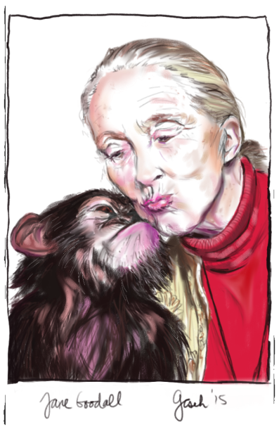 Jane Goodall drawing by G. Cseh
